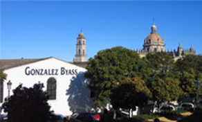 Visit A campo Abierto + lunch + Visit to Gonzalez Byass winery