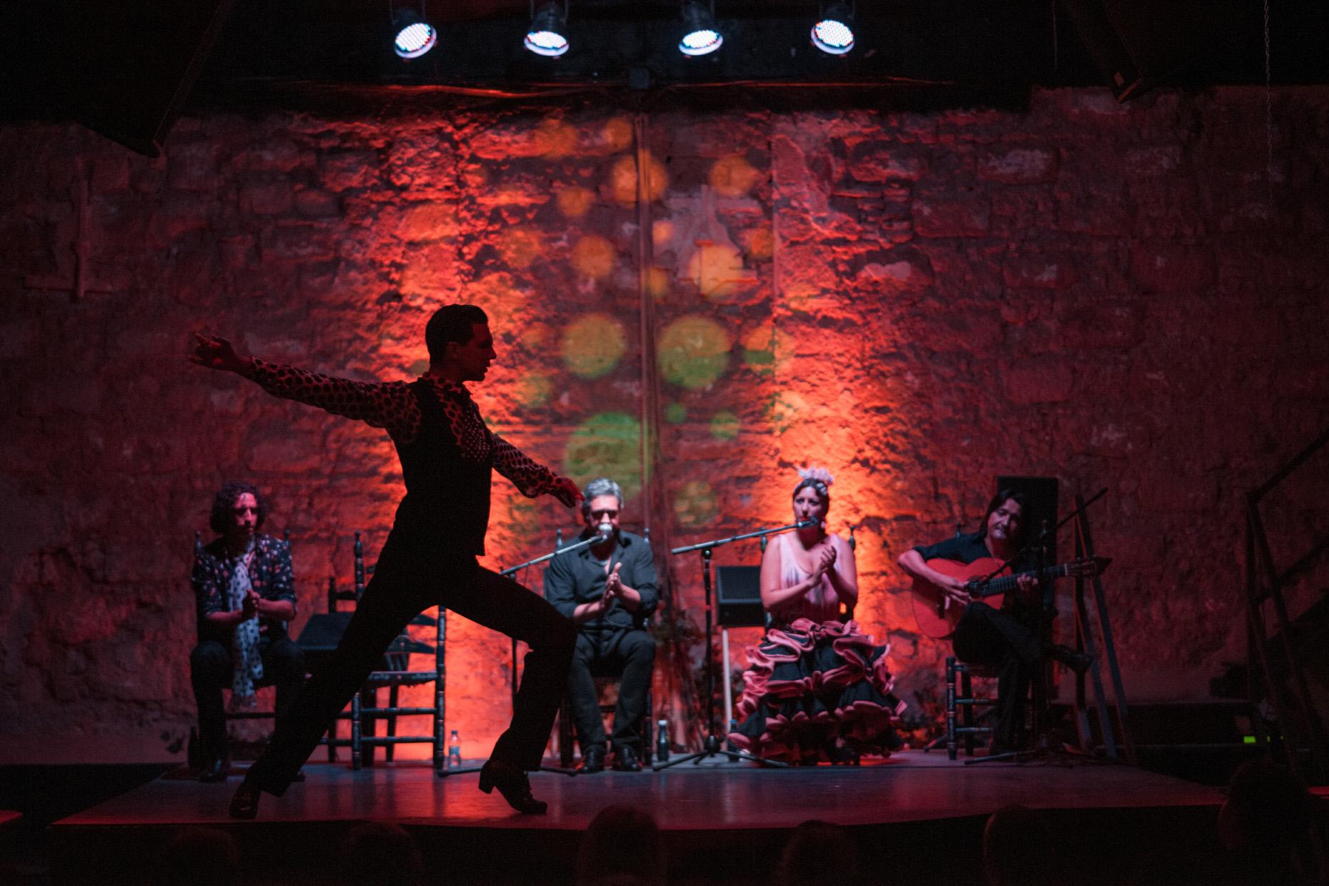 Flamenco, Toros y Caballos